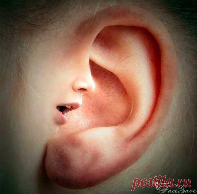 6 точек на ухе: зажимаем их прищепкой на 5 секунд и лечим всё тело | FaceSave.ru | Яндекс Дзен