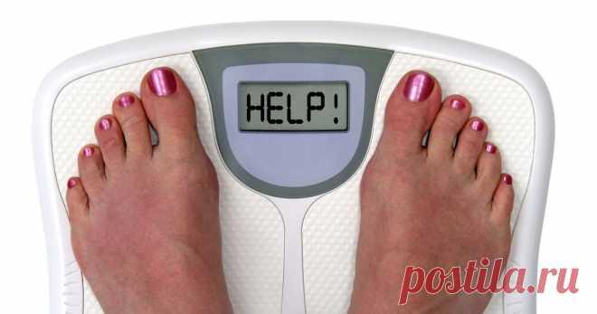 Эффективный метод похудения в домашних условиях...    В своем стремлении похудеть как можно быстрее и эффективнее современные люди часто увлекаются излишне радикальными «голодными» диетами, которые приводят не к похудению, а к развитию различных забол…