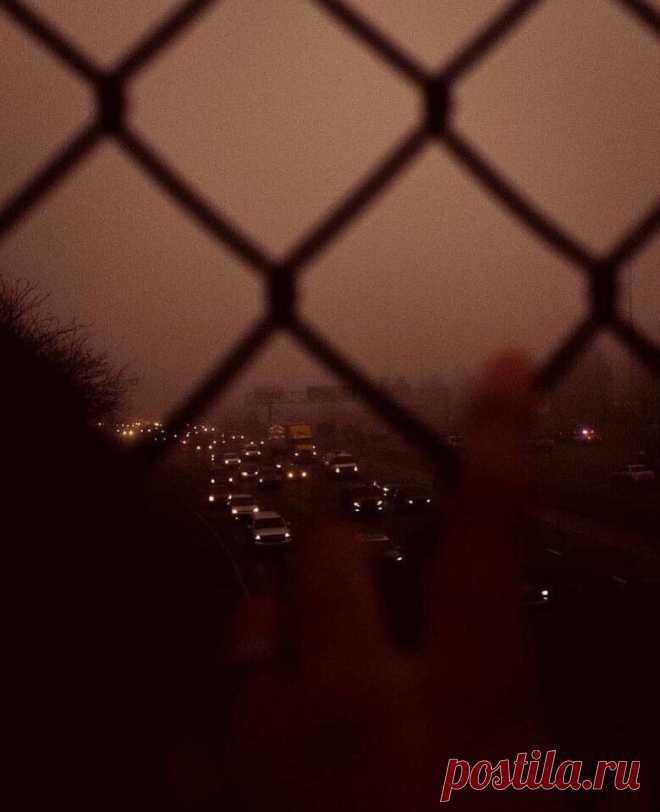И чувства нет в твоих очах,  И правды нет в твоих речах,  И нет души в тебе.    Фёдор Тютчев