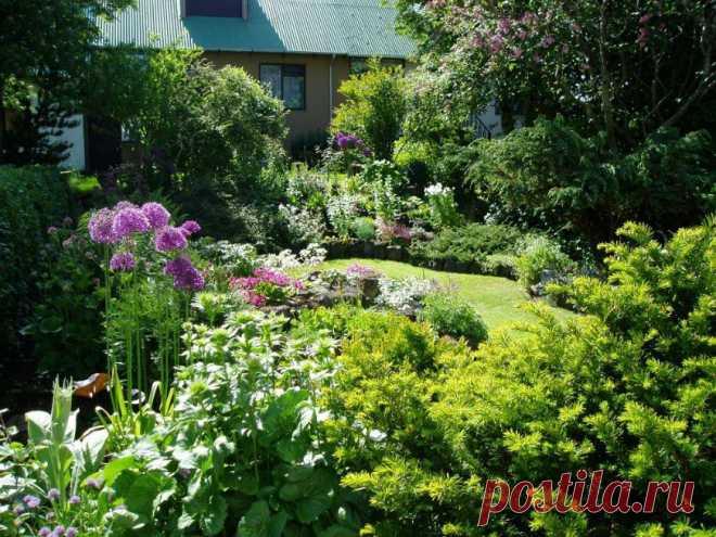 Прекрасный сад -цветочный сад.