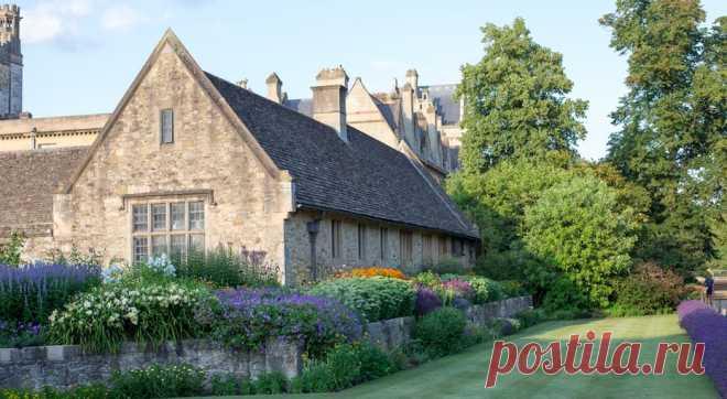 Что посадить, чтобы сад весь год был зеленым? Советы английского философа XVII века - Квартира, дом, дача - медиаплатформа МирТесен