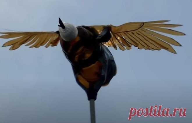 Дачник сделал пугало из пластиковой бутылки, которое птицы облетают десятой дорогой