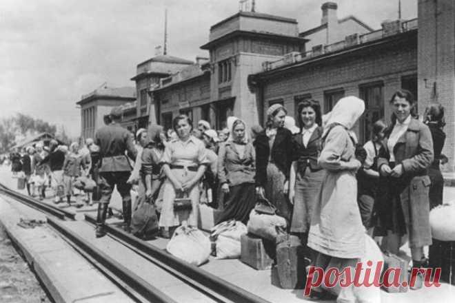 11 февраля 1945 года на Ялтинской конференции было заключено соглашение: независимо от желания советских граждан, вернуть их на родину в самые кратчайшие сроки.