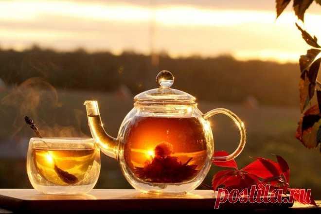 Как правильно пить чай: 10 китайских запретов - foodandmood.com.ua