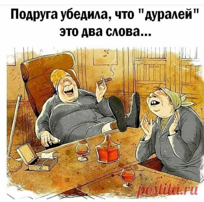 юмор в картинках с надписями до слез про жизнь: 8 тыс изображений найдено в Яндекс.Картинках