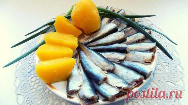 Соленая килька пряного посола домашнего приготовления В этом видео рецепте я покажу Вам как я готовлю кильку пряного посола в домашних условиях. Эту соленую кильку можно употреблять как самостоятельное блюдо или для приготовления вкусных рыбных закусок. ...