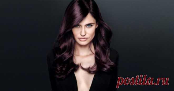 Стойкая краска для седых волос: как выбрать, подбор оттенка, обзор, отзывы