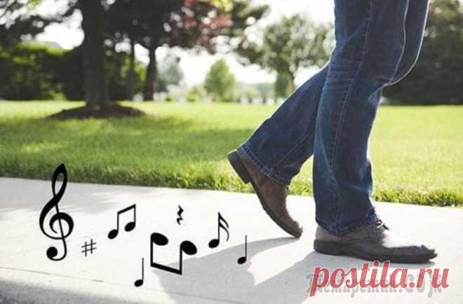 Обувь больше не будет скрипеть: эффективные способы решения проблемы