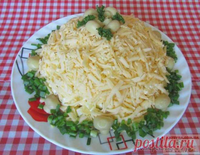 Chicken fillet and marinated mushrooms Margo salad