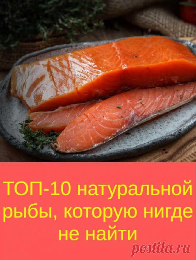 ТОП-10 натуральной рыбы, которую нигде не найти