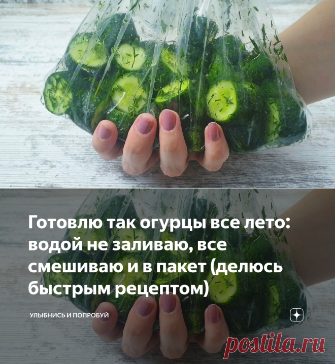Готовлю так огурцы все лето: водой не заливаю, все смешиваю и в пакет (делюсь быстрым рецептом)   Улыбнись и Попробуй   Яндекс Дзен