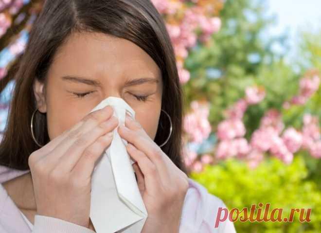 Как не стать жертвой аллергии » Женский Мир