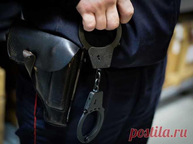 Что делать если вас незаконно задержала полиция?   Алексей Демидов