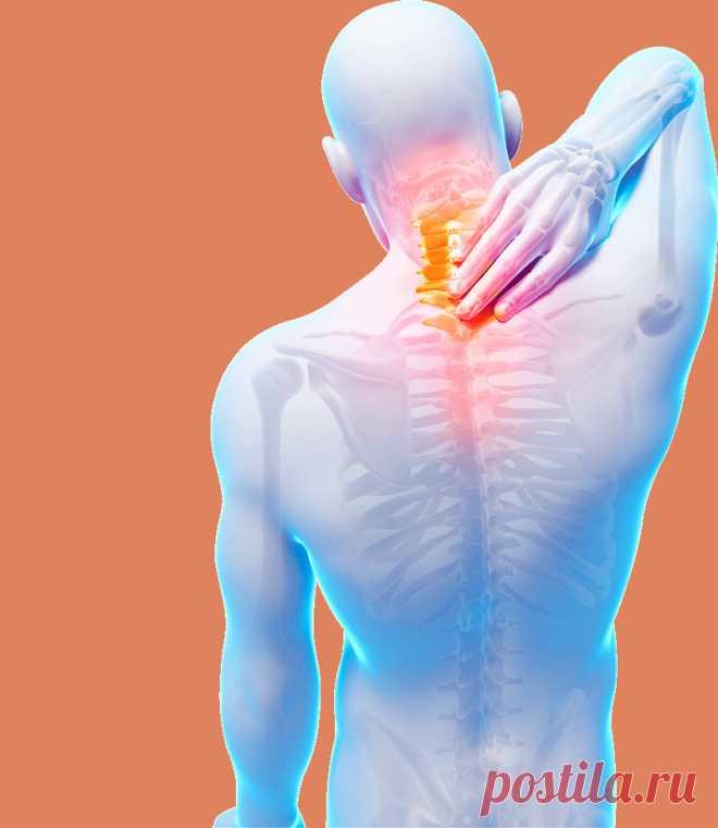 Упражнения для здоровой спины Болезни позвоночника – одни из наиболее распространенных патологий в нашем мире, а многие из них носят хронические формы. Боли в спине не позволяют нормально работать, отдыхать, из-за них люди злоупотребляют сильнодействующими препаратами, еще сильнее ухудшающими здоровье и самочувствие.
